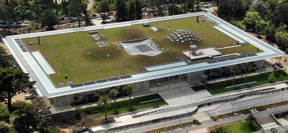 kaliforniya-bilimler-akademisi