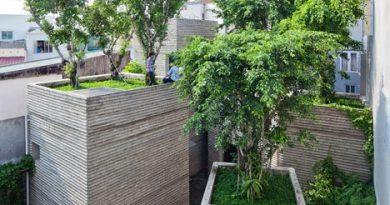 saksı ev vietnam