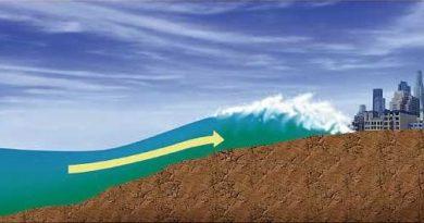 Tsunami2-img