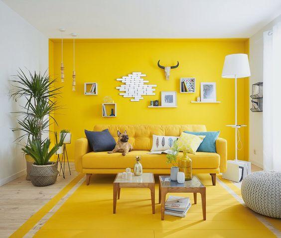 sarı-duvar-boyasi-img-1000
