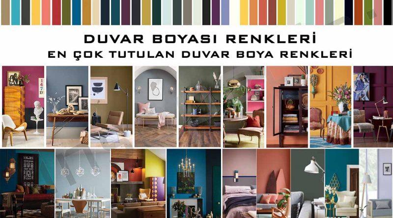 Duvar Boya Renkleri