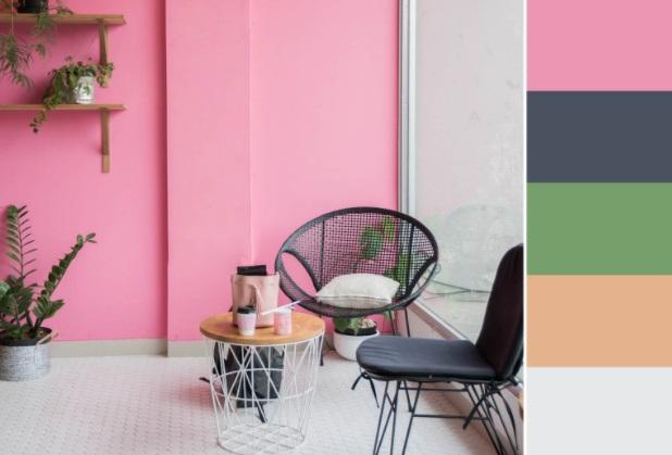 pembe-tonu-duvar-boyası-renk