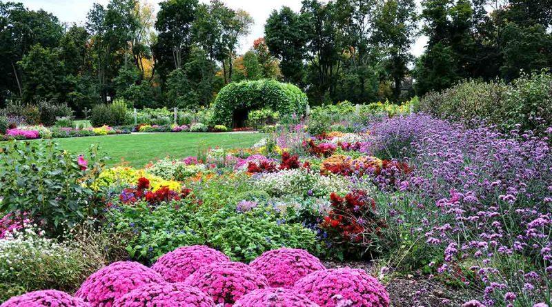 Arboretum-Nedir